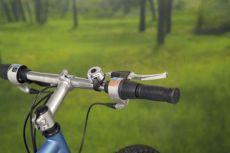 Klaxons de vélo & sonettes