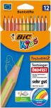 Présentoirs de crayons de couleur