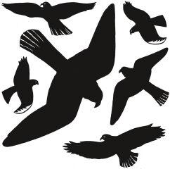 HERMA Oiseaux de vitres, film, résistant aux
