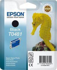 EPSON Encre pour EPSON Stylus Photo R300/RX500, noir
