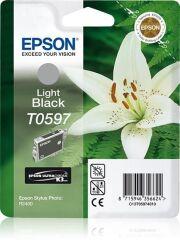 Encre originale pour EPSON Stylus Photo R2400, noir clair