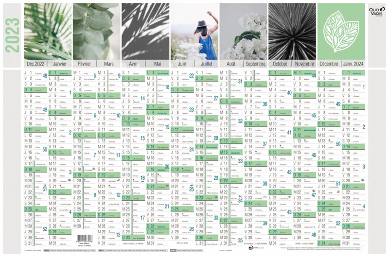 Quo vadis calendrier mural 39 equology 39 2016 650 x 430 mm for Calendrier mural 2015