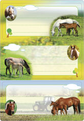 HERMA Étiquettes pour livres 'Cameléon', 76 x 35 mm