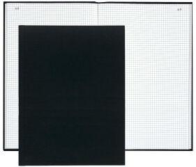 EXACOMPTA Registre quadrillé 5/5 folioté, 350 x 225 mm