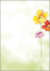 sigel Papier à motif, A4, 90 g/m2, motif 'Spring Flowers'