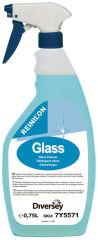 REINILON Nettoyant pour vitres, flacon pulvérisateur 750 ml