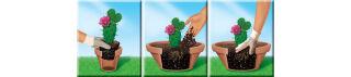 COMPO CACTEA Terreau pour cactus et succulentes, 5 litres